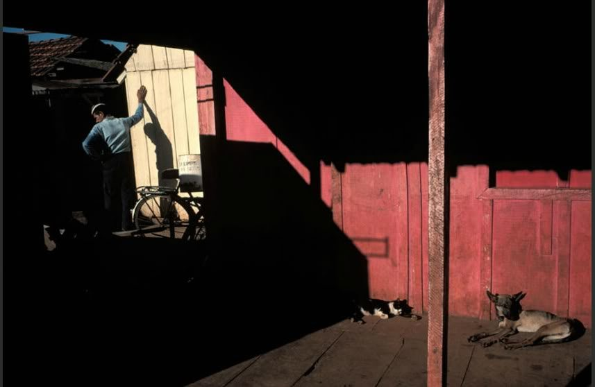 CropperCapture3-1