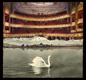 2-el-cisne-blanco